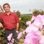 Le Bourg de Paille Henri BOURDIN dans le vignoble