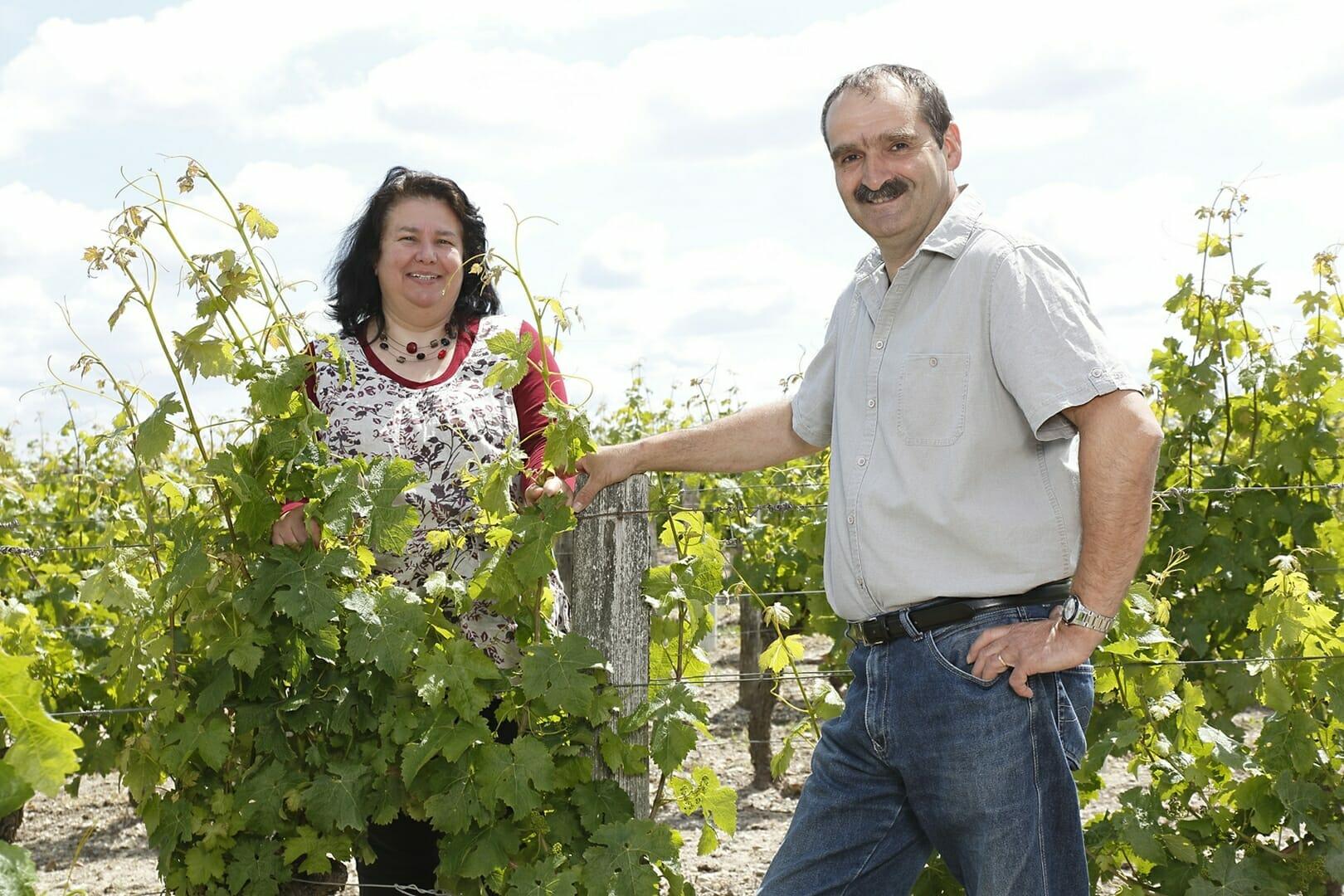Vignoble de la Rodaie
